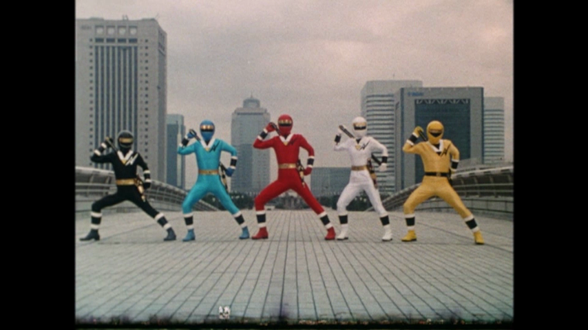We Are Ninja