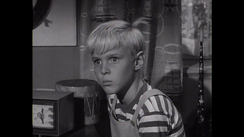 Dennis The Menace: S2 E1 - Out Of Retirement