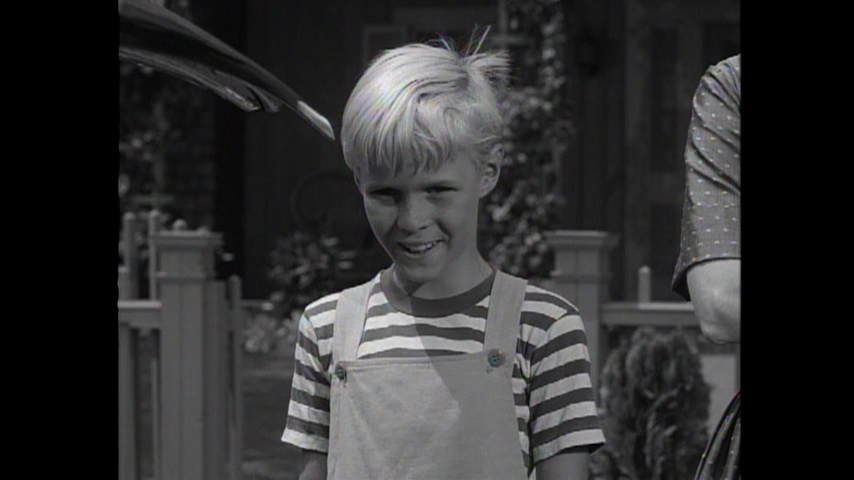 Dennis The Menace: S2 E4 - Dennis And The Ham-pher