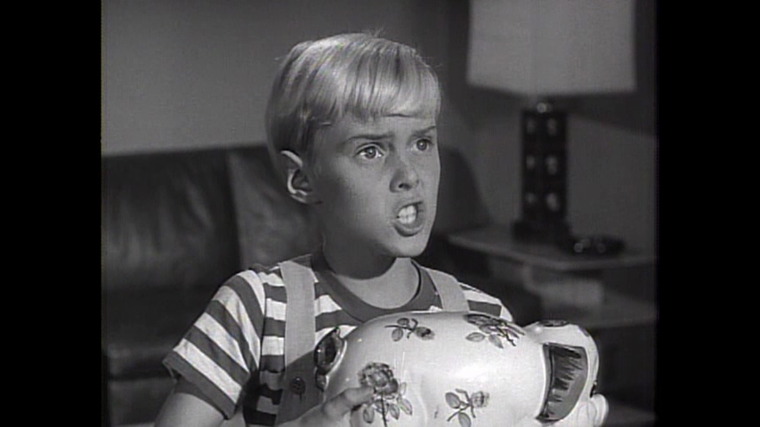 Dennis The Menace: S2 E15 - Dennis, The Campaign Manager