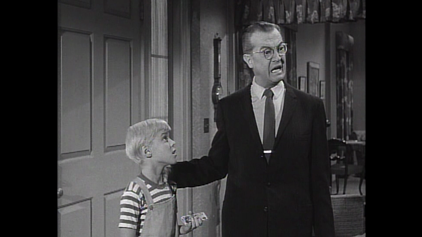 Dennis The Menace: S2 E16 - Miss Cathcart's Friend