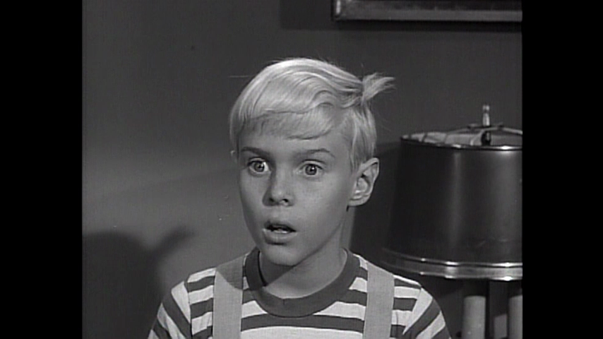 Dennis The Menace: Dennis' Birthday