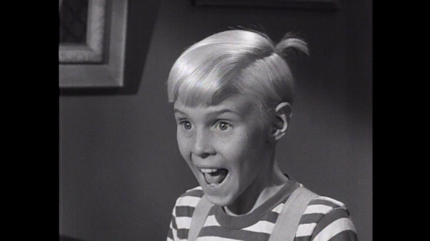 Dennis The Menace: Dennis And The Good Example